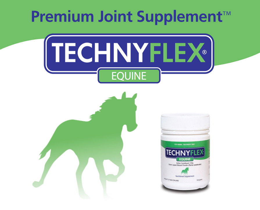 Technyflex Equine - Premium Arthritis and Joint Care Supplement
